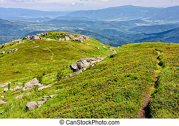 path to the mountain top