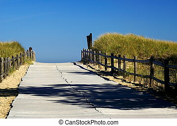 a walkway through the dunes to the beach