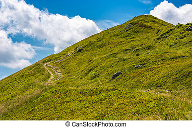 path uphill to the peak of mountain ridge. gorgeous summer...