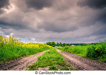 Path with dark clouds - Nature path with dark clouds in the...