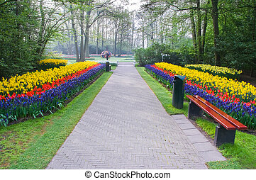 Path with spring flowers
