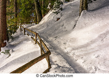 path with wooden fence in winter forest. lovely nature...