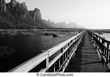 Pathway bridge on the lake in national park