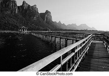 Pathway bridge on the lake
