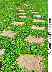 Pathway in a green grass