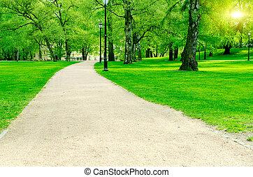 Road in city garden at summer
