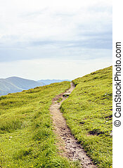 Pathway in Fagaras Mountains with grass on sides