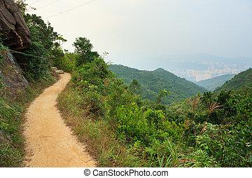 Pathway in hong kong mountains
