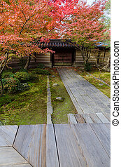 Pathway in japanese style garden