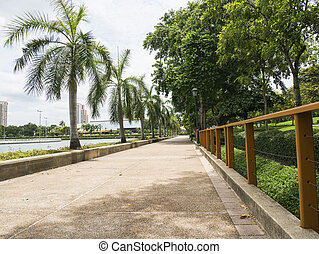 Pathway in the park 3