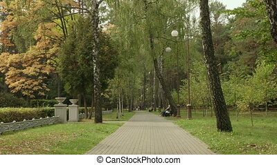Pathway in the park. Autumn daytime. Smooth dolly shot
