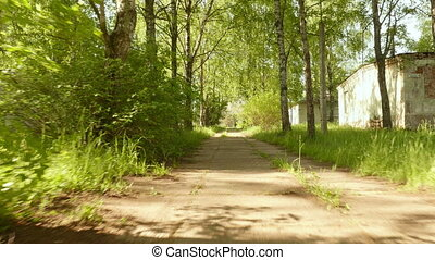 Pathway in the park. Smooth and slow steady cam shot. Clean...