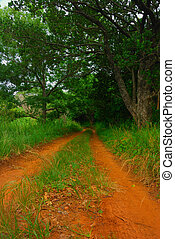 Pathway to now where