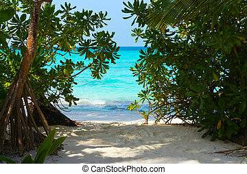 Pathway to tropical beach, abstract vacation background