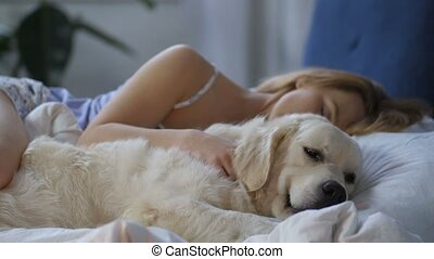 Patient dog waiting for awakening of woman owner - Awake...