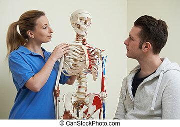 patient, squelette, ostéopathe, utilisation, blessure, discuter