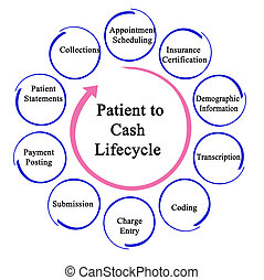 Patient to Cash Life Cycle