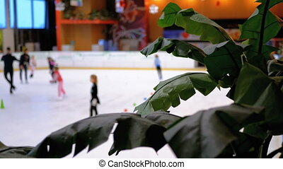 patinage, gens, glace, centre commercial, barbouillage, rink.