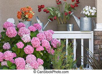 patio, i, lyserød, hydrangeas