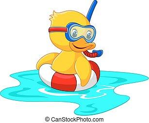 pato, buzo, natación