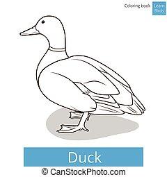 pato, vetorial, aprender, pássaros, tinja livro