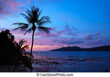 patong, thailand, sonnenuntergang, phuket, sandstrand