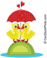 patos, guarda-chuva, dois, sob