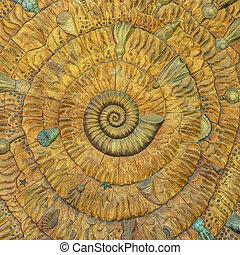 patrón, asombroso, esqueleto nautilo, fibonacci
