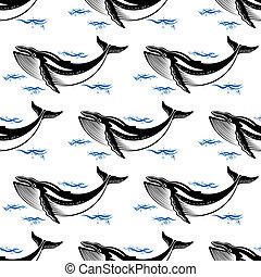 patrón, ballena, seamless, natación