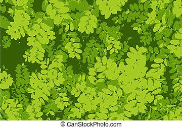 patrón, hoja, fondo verde