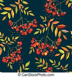 patrón, hojas, bayas, rowan, seamless