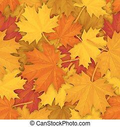patrón, hojas, caído, arce