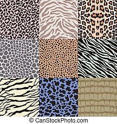 patrón, repetido, piel animal