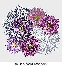 patrón, resumen, flor, aster