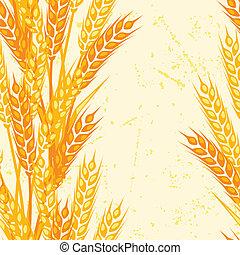 patrón, wheat., seamless, orejas