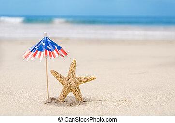 patriótico, starfishes, estados unidos de américa, plano de...