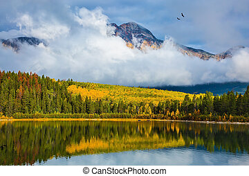 Patricia Lake amongst distant mountains - Charming Patricia ...