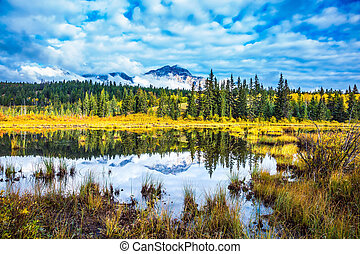 Patricia Lake amongst the evergreen forests and distant ...