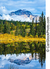 Patricia Lake amongst the yellow bushes and mountains - ...