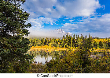 Patricia Lake and Pyramid Mountain - Patricia Lake among the...