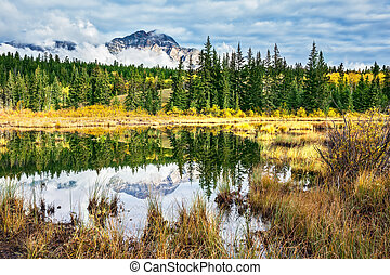 Patricia Lake surrounded by yellow autumn grass - Patricia ...
