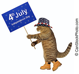 patriot, 2, spandoek, kat