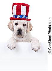 Patriotic Dog Sign - Patriotic Labrador puppy dog holding...