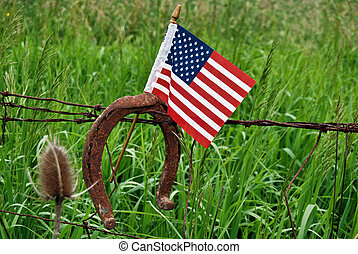 Patriotic Pasture - American flag and rusty horseshoe on a...