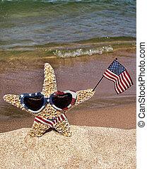 Patriotic Starfish - Starfish with American flag on a beach.