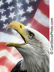 United States of America - Patriotic Symbols - The United...