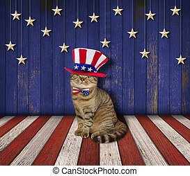 Patriotic wall and cat 1