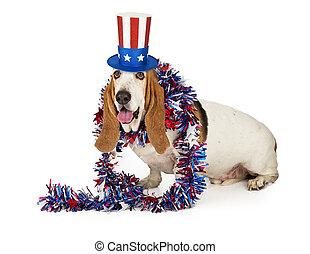 patriotique, basset, américain, chien de chasse, chien