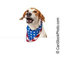 patriotique, conversation, américain, bannière, chien