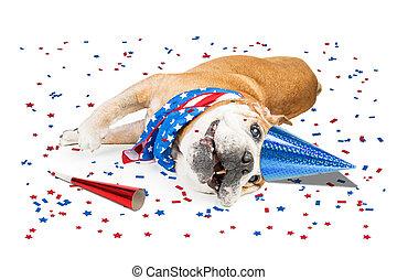patriotique, rigolote, chien, fête